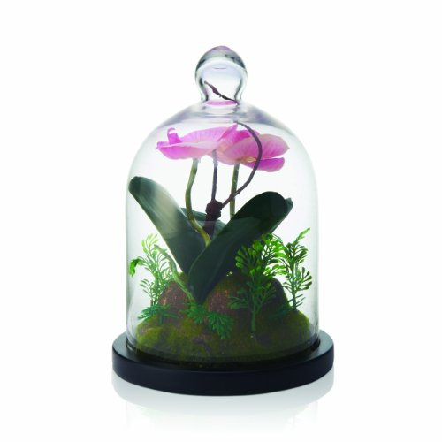 Elements Orchid Glass Dome Accent, 10-Inch
