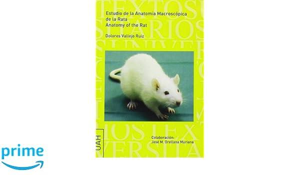 Estudio de la anatomía macroscópica de la rata. Anatomy of the rat ...