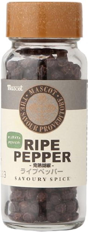 金額進むかすかなホワイトペッパーホール 100g White Pepper Whole ホワイトペッパー 原型 白胡椒 コウベグロサーズ