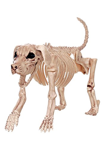 Crazy Bonez Skeleton Dog - Beagle (Halloween Dog Skeleton)