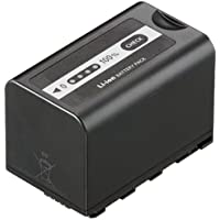 Panasonic VW-VBD58 Rechargeable Battery (Black)