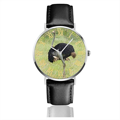Ostrich Paw Belt - Watch South African Ostrich Amazing Wrist Watches Quartz Stainless Steel and PU Leather Personalized Custom for Unisex
