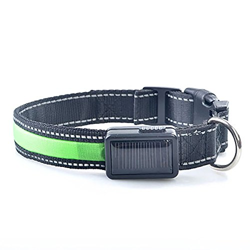 Pevor LED Dog Collar USB Solar Rechargeable Nylon Reflective with Water Resistant Flashing Light 7 Colors Night Safety Collars Cable Included
