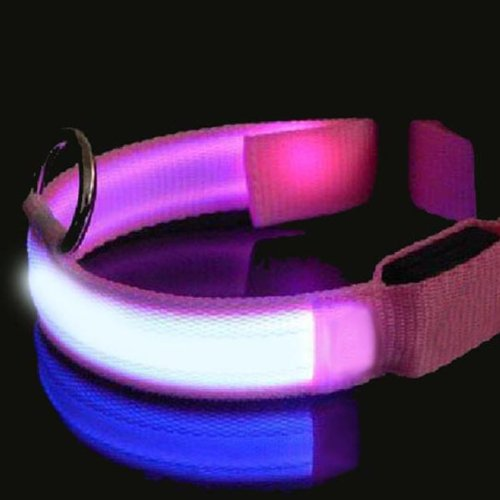 Rosa LED Hundehalsband Nacht Sicherheit Hundehalsband blinkend.