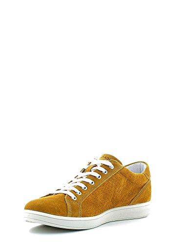 Sneakers Uomo amp;CO IGI 7676 Giallo afHqEx