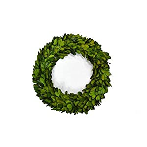 Mini Preserved Boxwood Wreath/Candle Ring for Interior Home Decor in Three Sizes 7