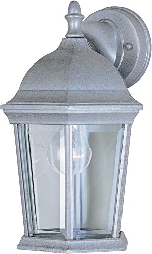 Cast 1-Light Outdoor Wall Lantern, Pewter Finish, Clear Glass, MB Incandescent Incandescent Bulb , 40W Max., Dry Safety Rating, 2900K Color Temp, Standard Dimmable, Glass Shade Material, 9000 Rated Lumens ()