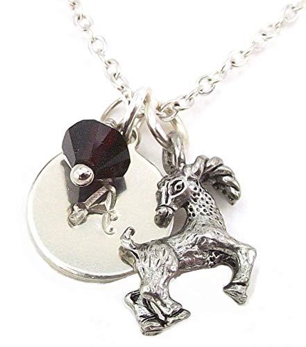 (LaFenne Zodiac Pendant Necklace with Custom Alphabet Charm Birth Month Crystal from Swarovski Personalized Gift (Capricorn - January))