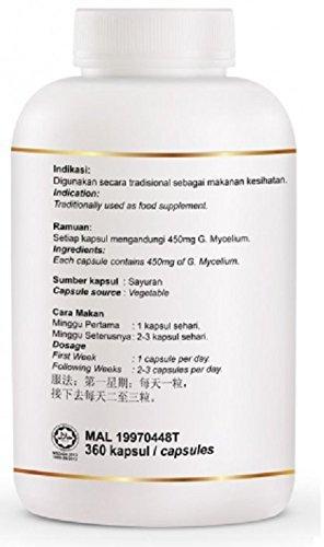 Cheap MUST BUY ! 1 Bottle DXN Ganocelium GL-360 with Ganoderma ( Total : 360 Capsules x 450 mg )