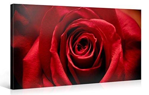 Large Canvas Print Wall Art – STUNNING RED ROSE – 40x20 Inch Flower Canvas Picture Stretched On A Wooden Frame – Giclee Canvas Printing – Hanging Wall Deco Picture / - Red Rose Frames