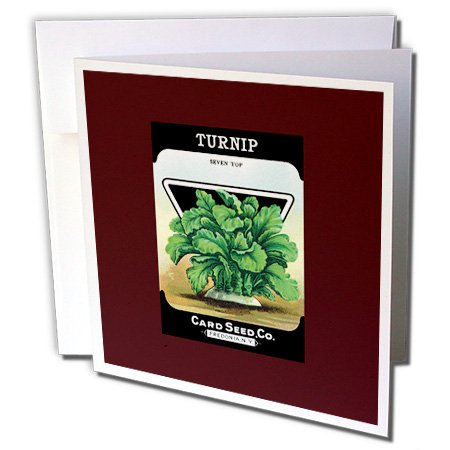 (3dRose BLN Vintage Seed Packet Reproductions - Turnip Seven Top Card Seed Company Vegetable Seed Packet - 1 Greeting Card with envelope (gc_170951_5))