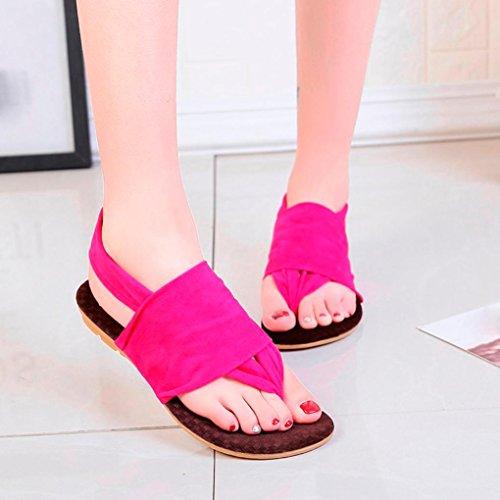 Beautyjourney forme Plate Sandales Femmes Beach femmes Talons Bohème Rose Chaussures A Sexy flop Flip Semelle Tongs Vif Souple rxr4wvfP