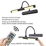 LUXSWAY Wireless Picture Light Battery