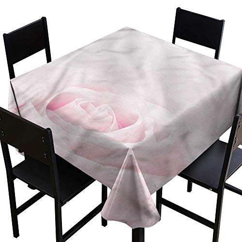 SKDSArts Wrinkle Free Rose,Close Up Pink Flourish,W60 x L60 for Cards (Flourish Pink)