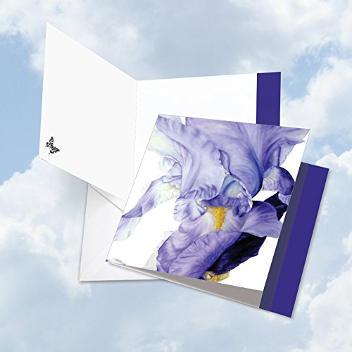 JQ4949DBDG Jumbo Birthday Square-Top Card: Iridescent Iris Featuring Silky Images of Iris Flower Petals, with Envelope (Extra Large Size: 8.25
