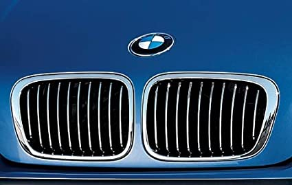 2002 bmw 325ci grill replacement