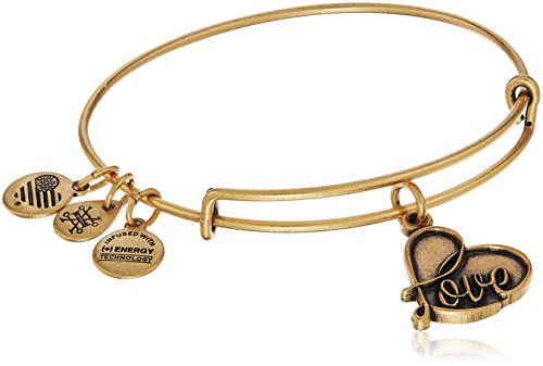 Gold Charm Bracelets (Alex and Ani Love IV Rafaelian Gold Charm)