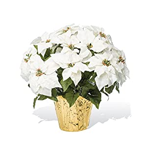 PETALS – Large Premier Silk Poinsettia – Handcrafted – Amazingly Lifelike – 23 x 22 Inches (White)