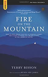 Fire on the Mountain (Spectacular Fiction)