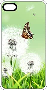 Butterfly Exploring A Daisy In Full Bloom White Plastic Case for Apple iPhone 4 or iPhone 4s