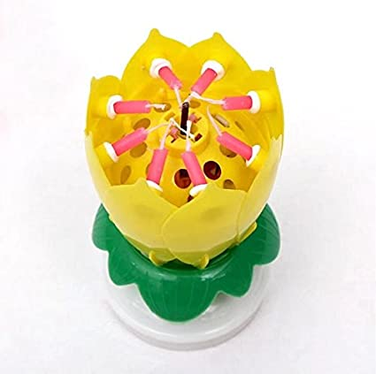 Amazing Happy Birthday Music Candle Novelty Blooming Lotus Flower Yellow Amazoncouk DIY Tools