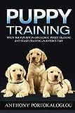 Puppy training: Train your puppy in