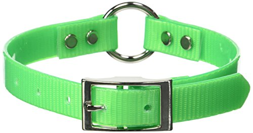 Sunglo Collar Reflective (OmniPet Sunglo Ring in Center Dog Collar, 3/4 x 20, Neon Green)