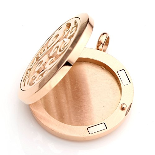 Chain Piercingj 15pcs With Surgical Felt Diffuser Rose Steel Pads Gold Essential Aromatherapy Cloud Gift Healing Stainless Oil 316l 7 Necklace Locket Chakra Box Pendant r7qxwZdEr