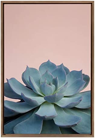 Kate and Laurel Sylvie Succulent 10 Framed Canvas Wall Art