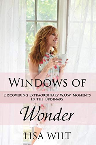 Windows of Wonder: Discovering Extraordinary W.O.W. Moments in the Ordinary