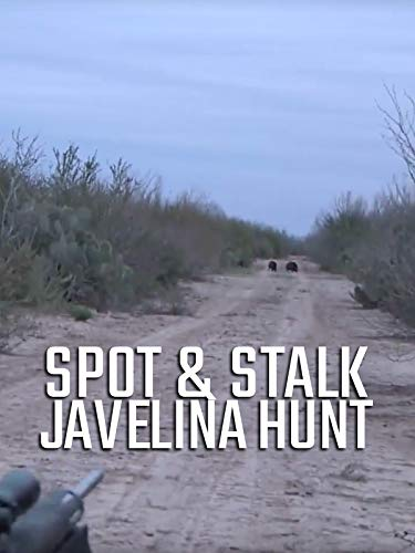 Spot and Stalk Javelina Hunt!