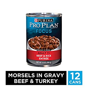 Purina Pro Plan Senior Gravy Wet Dog Food, FOCUS Morsels in Gravy Beef & Rice Entree – (12) 13 oz. Cans