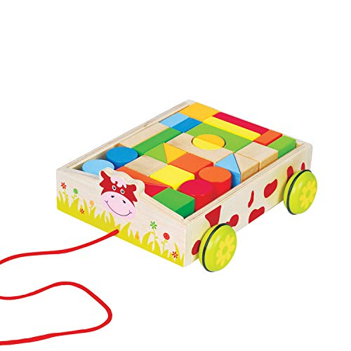 Educational Toy Kit for Babies & Toddlers - Magnetic Wooden Pull Cart on Wheels Toy with Colorful, Geometric Blocks for Learning Spatial Awareness, Shapes, & Colors
