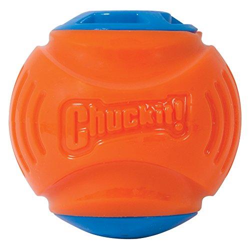 Chuckit! Locator Sound Ball, Medium (Toys For The Blind)