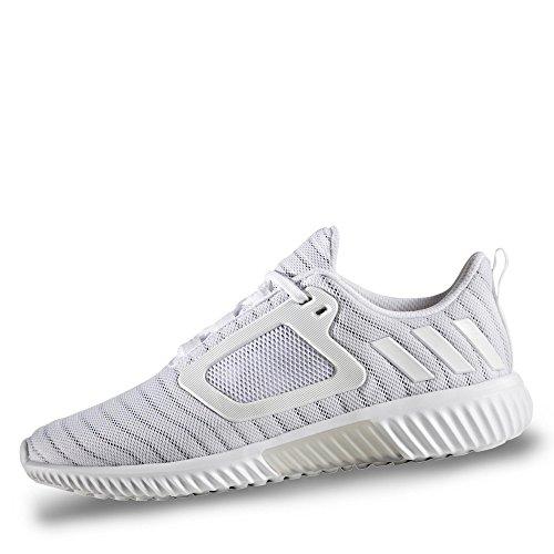 Cw Adidas Adidas Cw Climacool Cw Climacool Climacool Adidas Climacool Adidas xOzFCYqw