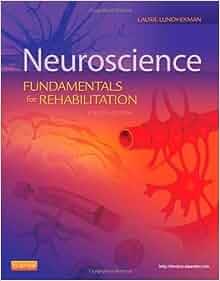 fundamental neuroscience 4th edition pdf download