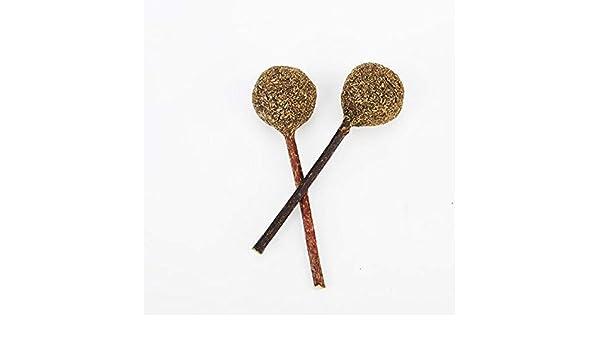 Qbisolo Catnip Lollipop, Palo de Limpieza de Dientes de Madera ...