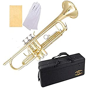 Bb Black and Nickel bb flat with mute and hard case Nasir Ali Tr-08 Trumpet