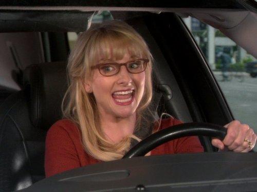 The Scavenger Vortex (Big Bang Theory Season 7 Dvd)