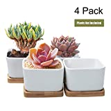 Succulent Plant Pots,OAMCEG 3.54 inch Square Design for Succulent/Cactus,Set of 4 White Ceramic Succulent Cactus Planter Pots with Bamboo Tray(Plants NOT Included)