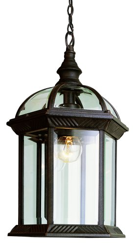 Trans Globe Lighting 4183 BC Outdoor Wentworth 17.5