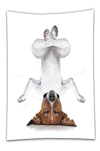 Beshowereb Fleece Throw Blanket Yoga Animal Decor Funny Dog Upside Down Relaxing with Closed Eyeand Doing Yoga Calm Therapy Humor Print Bedroom Living Room Dorm Art White Brown.jpg