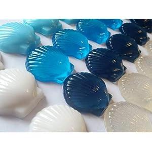 41khO3Ota%2BL._SS300_ Seashell Wedding Favors & Starfish Wedding Favors
