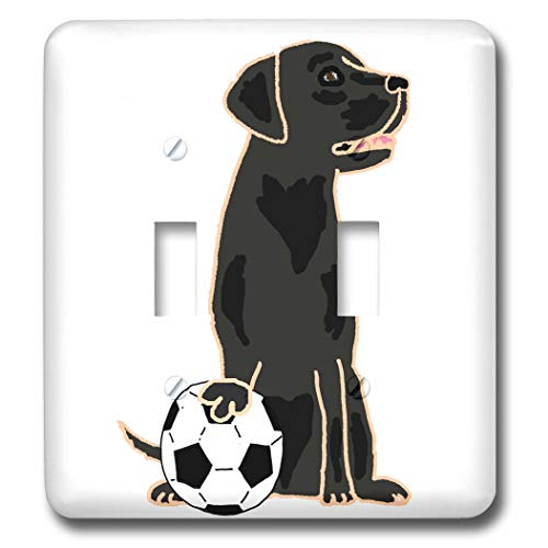 (3dRose All Smiles Art Sports and Hobbies - Funny Black Labrador Retriever Dog Playing Tennis Sports - Light Switch Covers - double toggle switch (lsp_287966_2) )