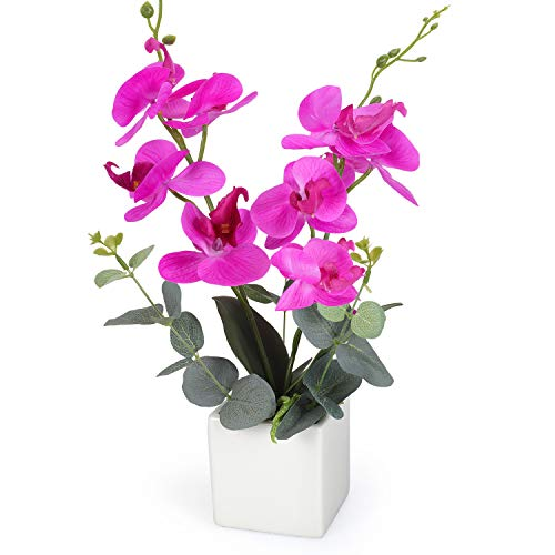 RERXN Artificial Orchid Bonsai Fake Orchid Arrangement 3 Heads PU Potted Phalaenopsis Plant for Home Party Decor (Rose Red)