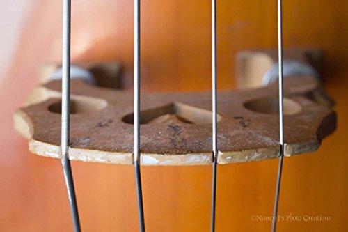 upright bass wall art - 1