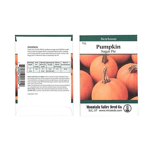 (Pumpkin Garden Seeds - Sugar Pie Variety - 5 Gram Packet - Non-GMO, Heirloom Pumpkins - Great for Pies and Canning - Vegetable Gardening Seed)
