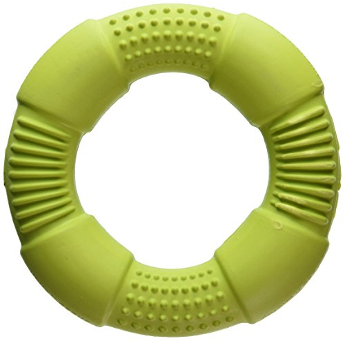 Chase 'n Chomp Go-Ring Pet Chew Toy, Small, Assorted Colors (Ring Pet)