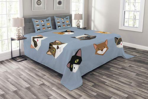 3 Piece Duvet Cover Full Cat Duvet Cover Set 1 Soft Comforter Cover and 2 Pillow Shams Animal Portrait Set with Cute Kittens Face Whiskers Contemporary Caricature Pattern Bedding ()