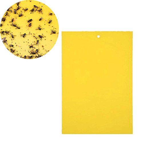 Price comparison product image 1 Pcs Strong Flies Traps Bugs Sticky Board Catching Aphid Insects Pest Killer